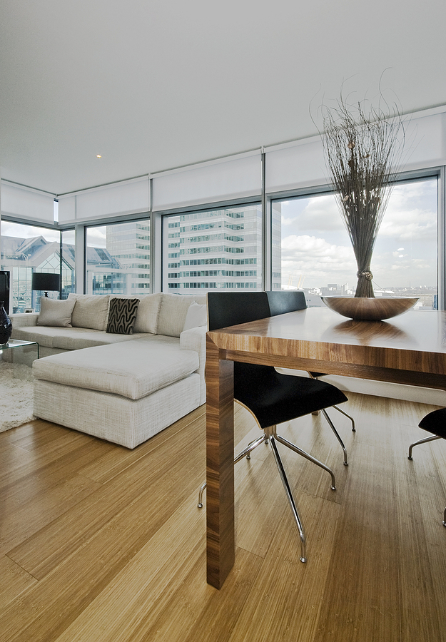 Modern apartment with bamboo flooring